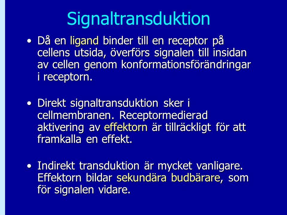 Signaltransduktion