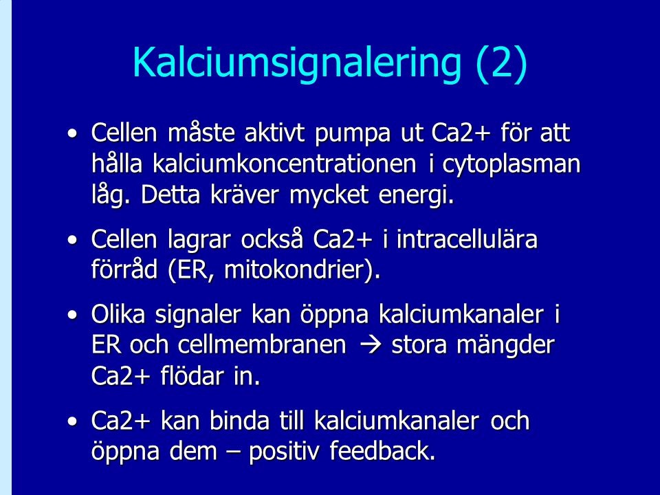 Kalciumsignalering (2)
