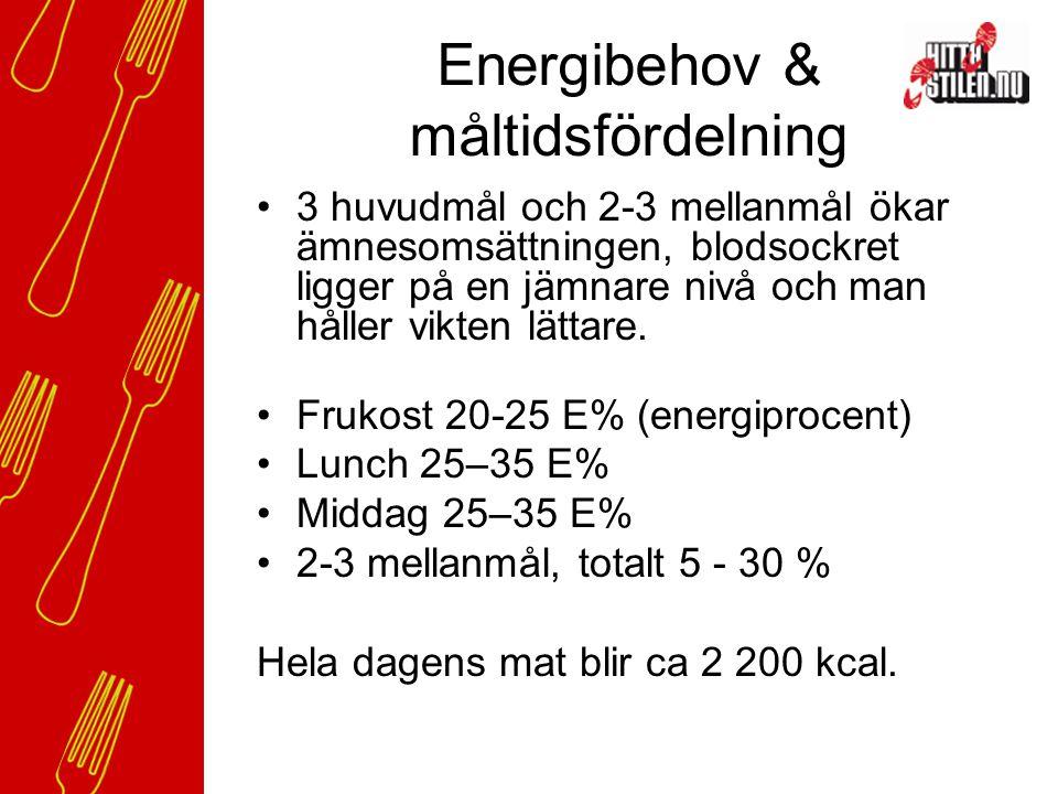 Energibehov & måltidsfördelning