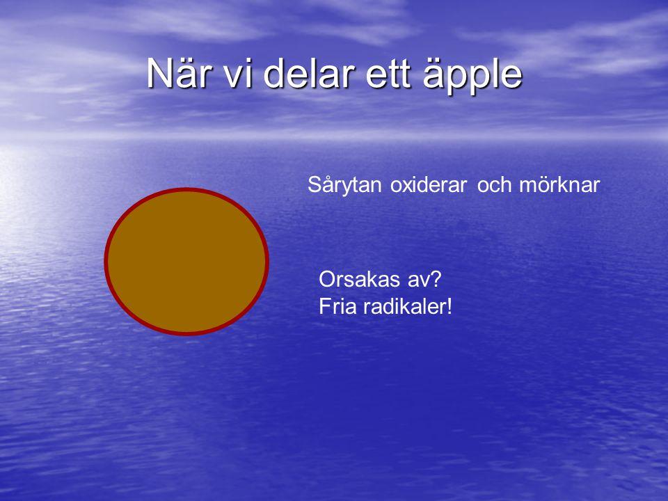 När vi delar ett äpple Sårytan oxiderar och mörknar