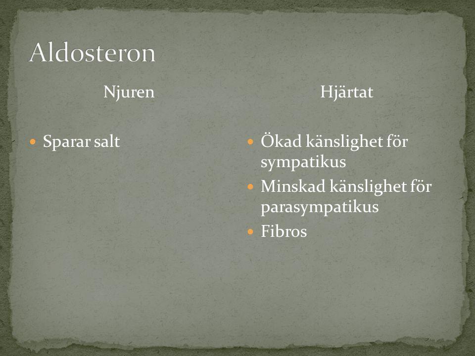 Aldosteron Njuren Sparar salt Hjärtat Ökad känslighet för sympatikus