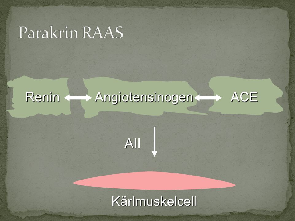 Parakrin RAAS Renin Angiotensinogen ACE AII Kärlmuskelcell