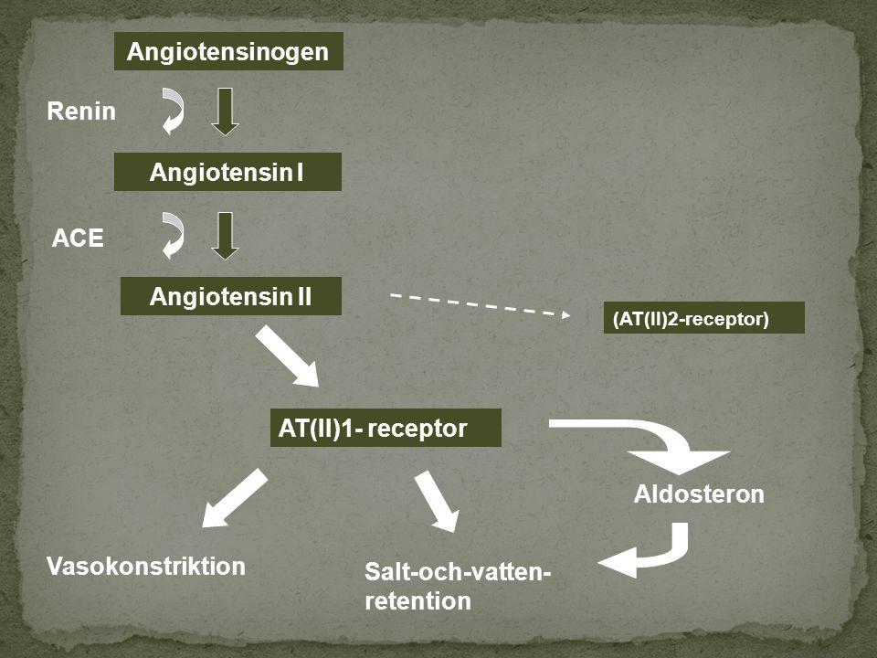 Angiotensinogen Angiotensin I Angiotensin II