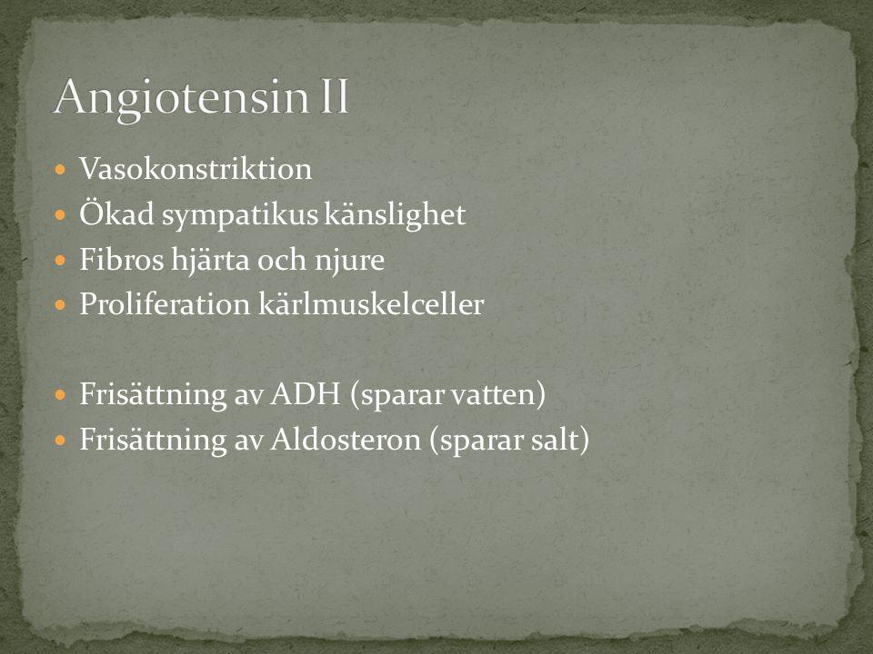 Angiotensin II Vasokonstriktion Ökad sympatikus känslighet