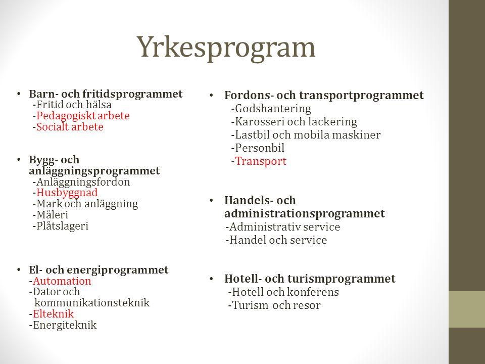 Yrkesprogram Fordons- och transportprogrammet -Godshantering