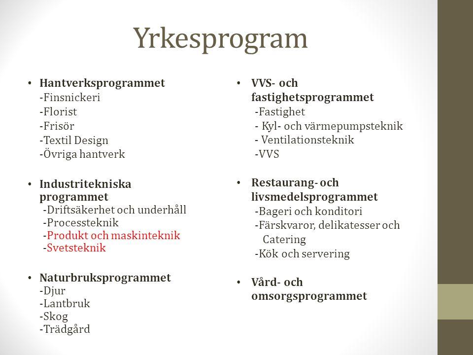 Yrkesprogram Hantverksprogrammet -Finsnickeri -Florist -Frisör