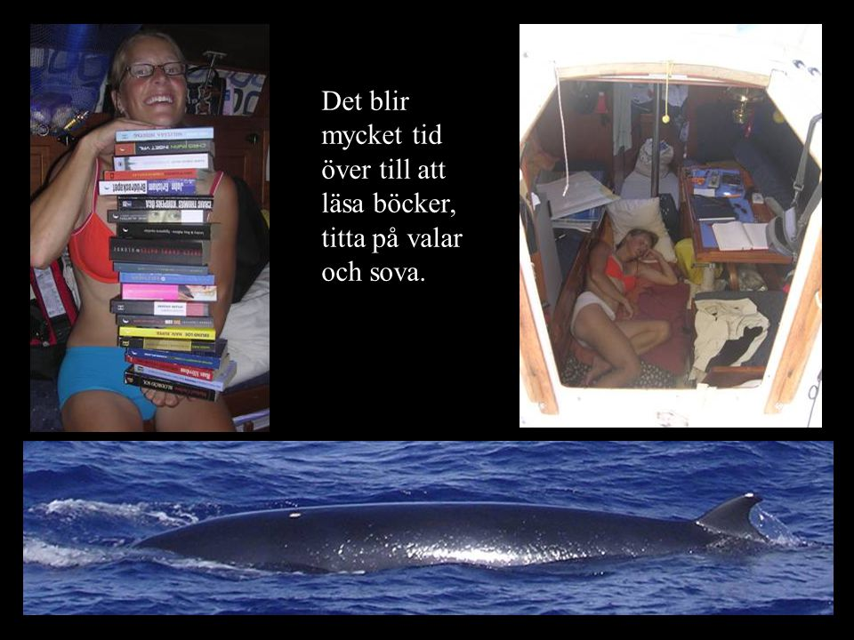 Det blir mycket tid över till att läsa böcker, titta på valar och sova.