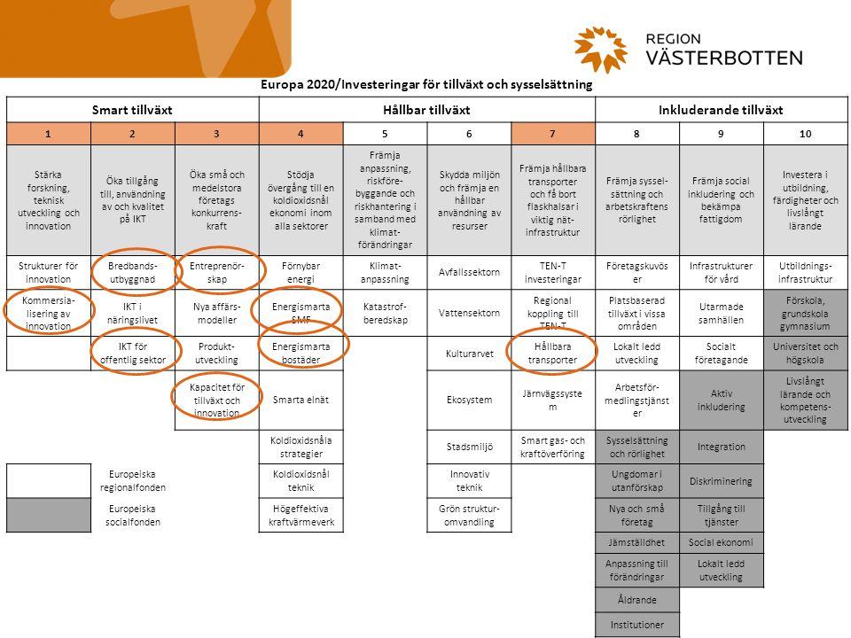 Europa 2020/Investeringar för tillväxt och sysselsättning