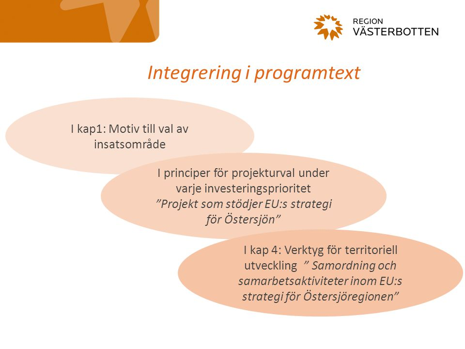 Integrering i programtext