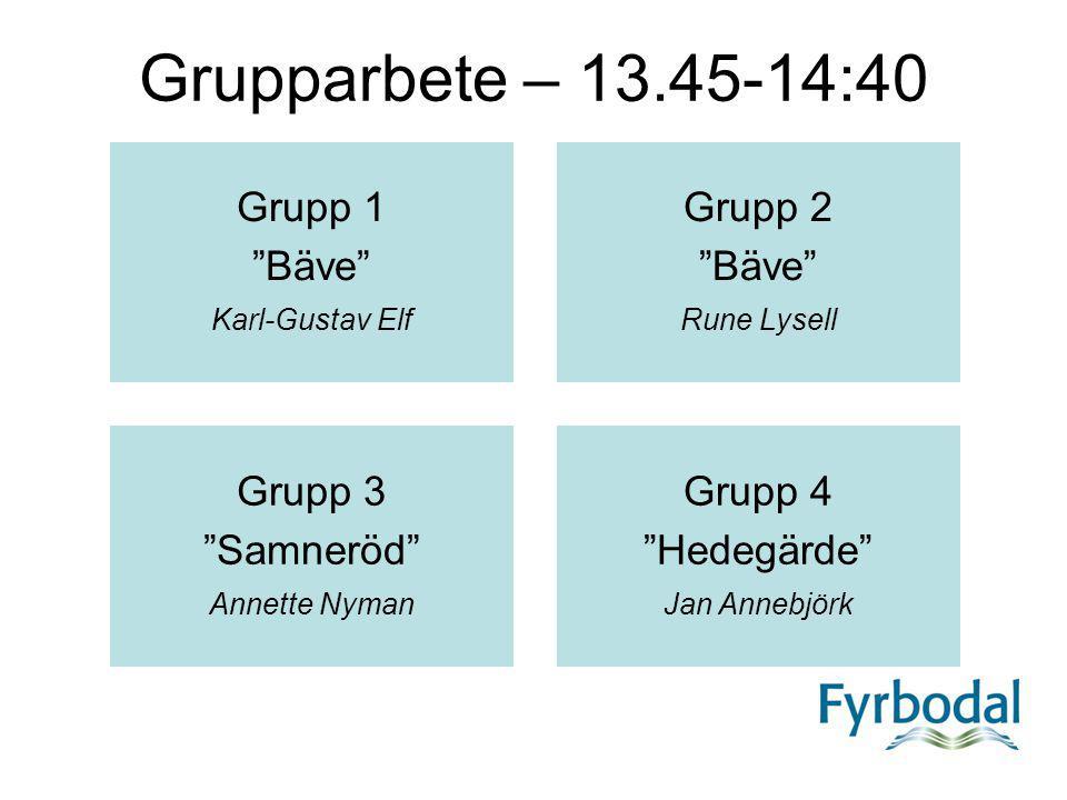 Grupparbete – 13.45-14:40 Grupp 1 Bäve Grupp 2 Grupp 3 Samneröd