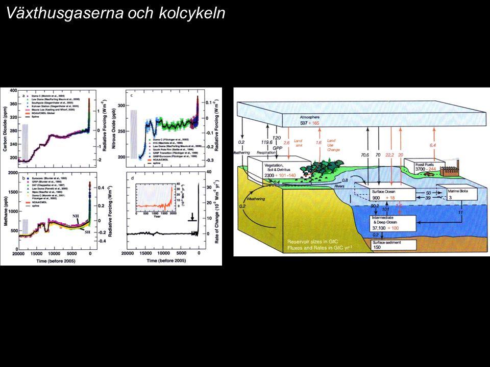 Växthusgaserna och kolcykeln