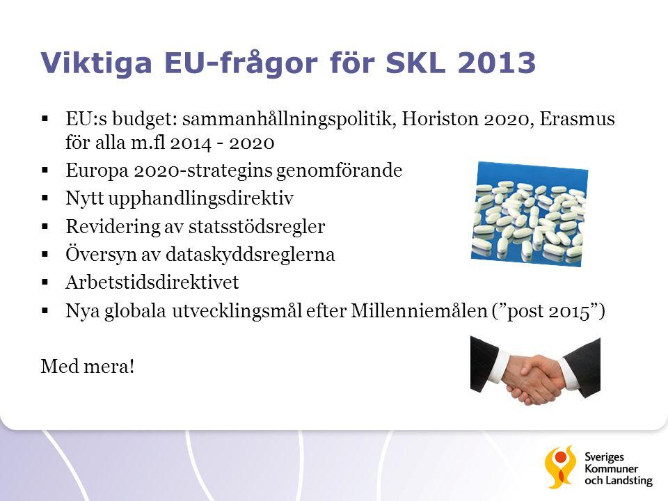 Viktiga EU-frågor för SKL 2013