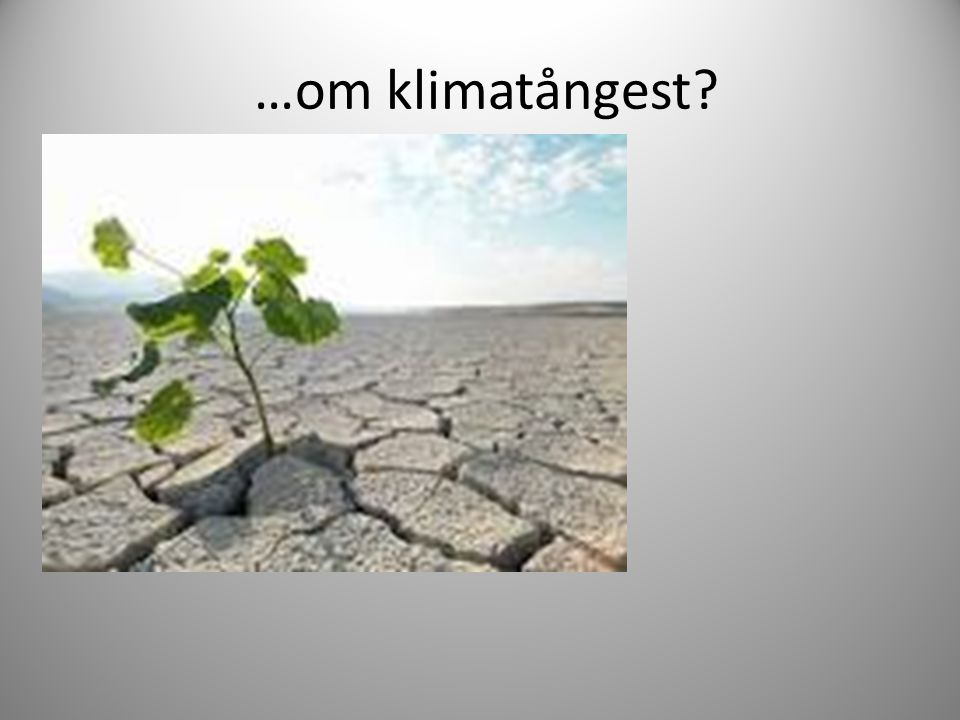 …om klimatångest