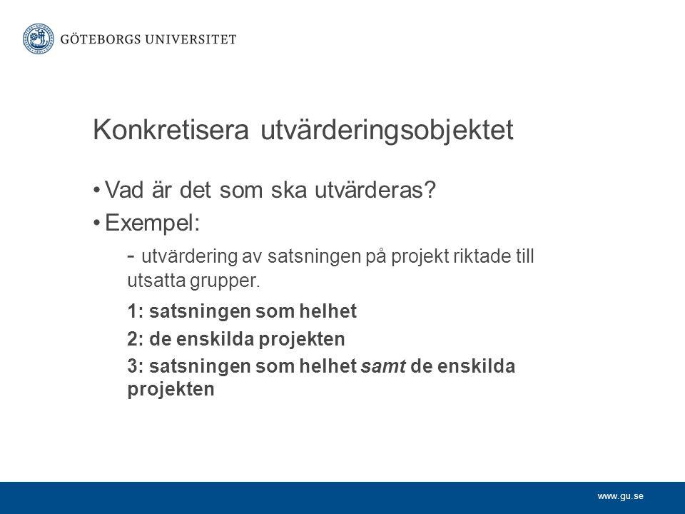 Konkretisera utvärderingsobjektet