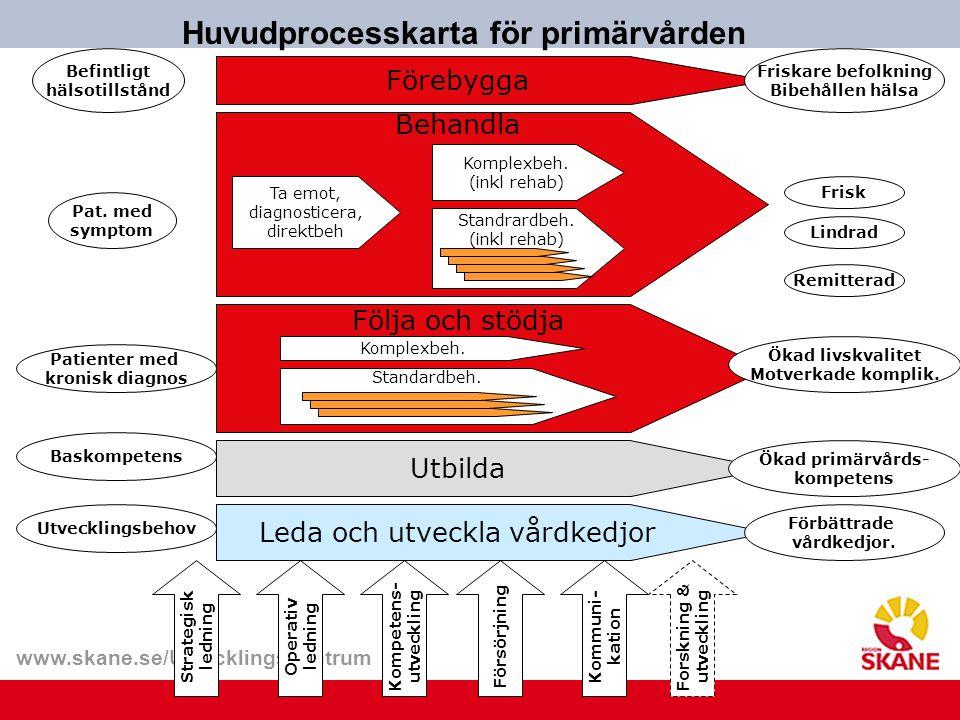 Huvudprocesskarta för primärvården