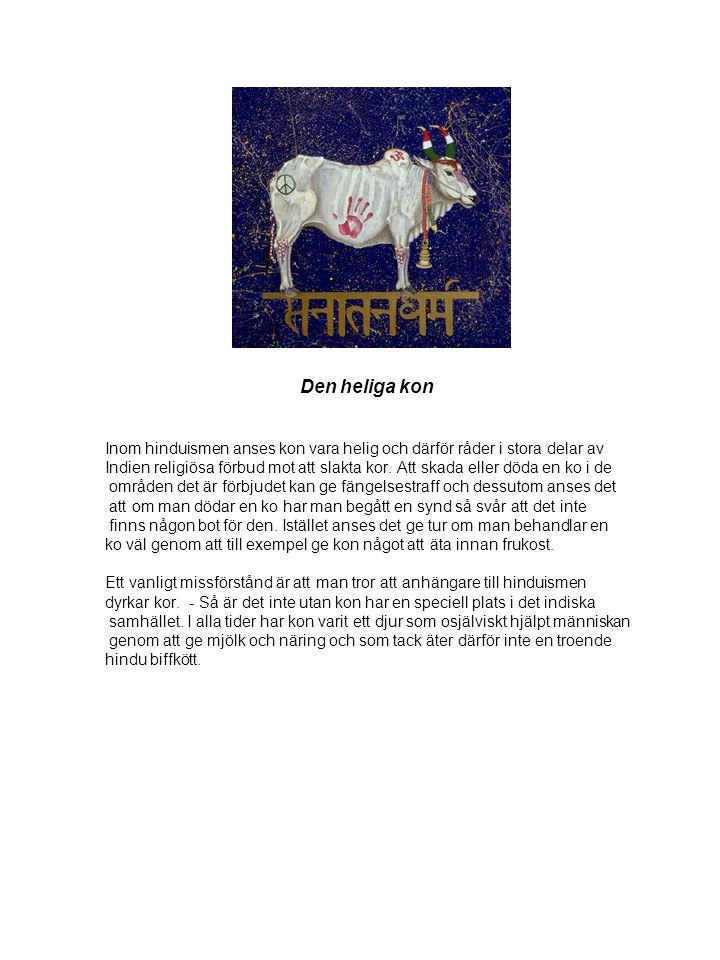 Den heliga kon Inom hinduismen anses kon vara helig och därför råder i stora delar av.