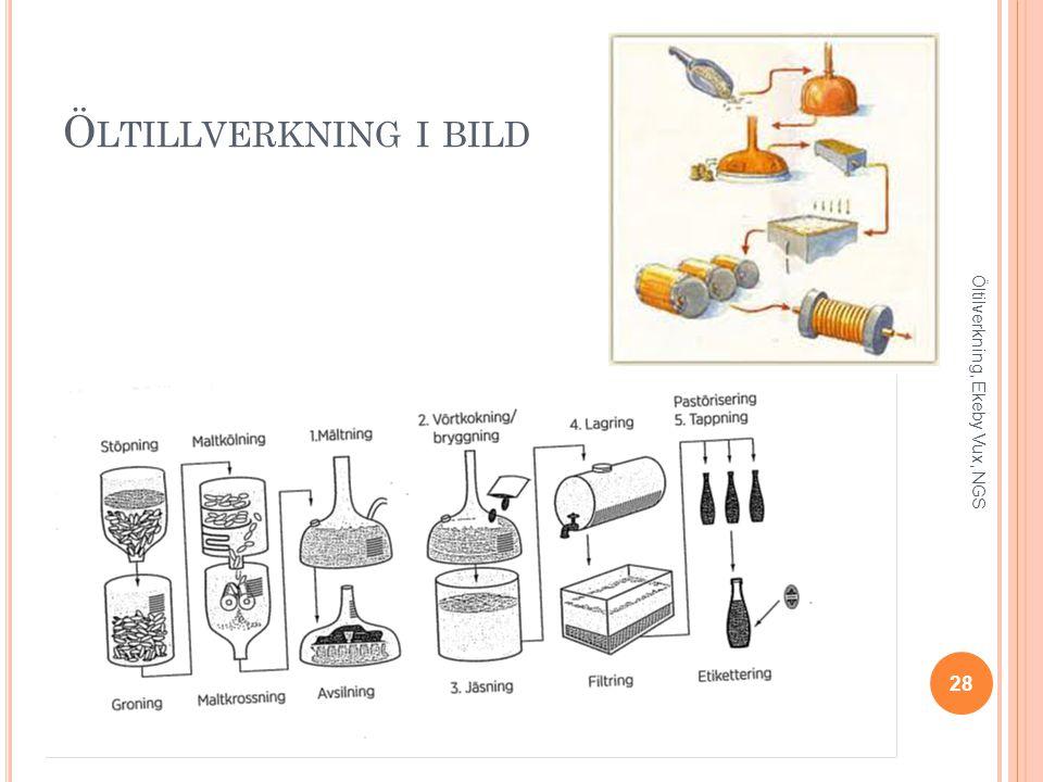 Öltillverkning i bild Öltilverkning, Ekeby Vux, NGS