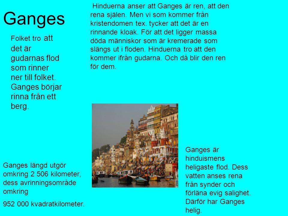 Hinduerna anser att Ganges är ren, att den rena själen