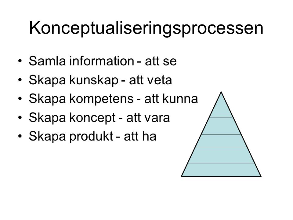 Konceptualiseringsprocessen