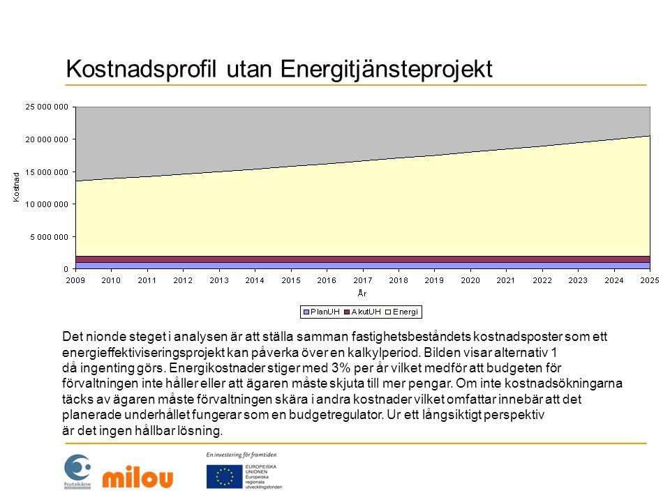Kostnadsprofil utan Energitjänsteprojekt
