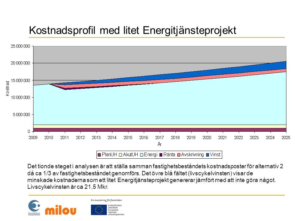 Kostnadsprofil med litet Energitjänsteprojekt