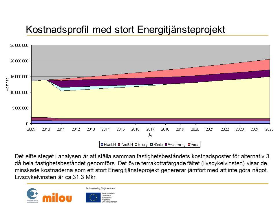 Kostnadsprofil med stort Energitjänsteprojekt