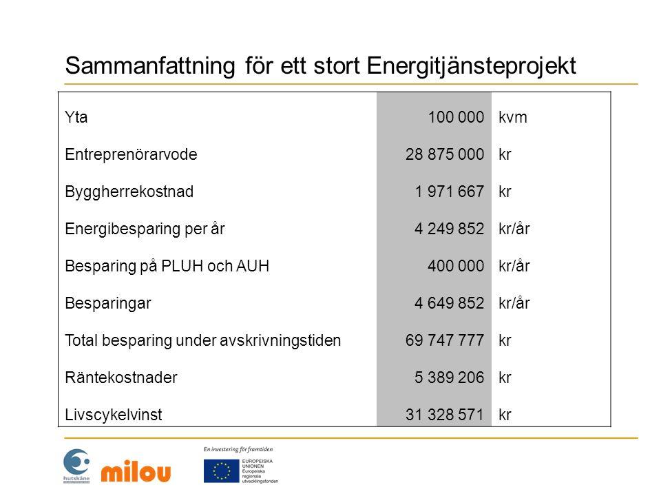 Sammanfattning för ett stort Energitjänsteprojekt