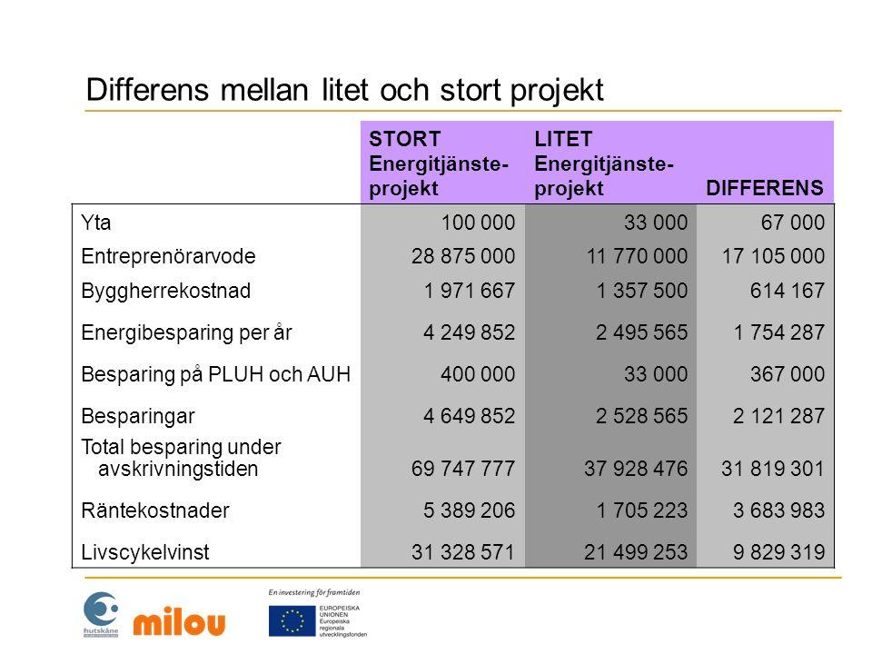 Differens mellan litet och stort projekt