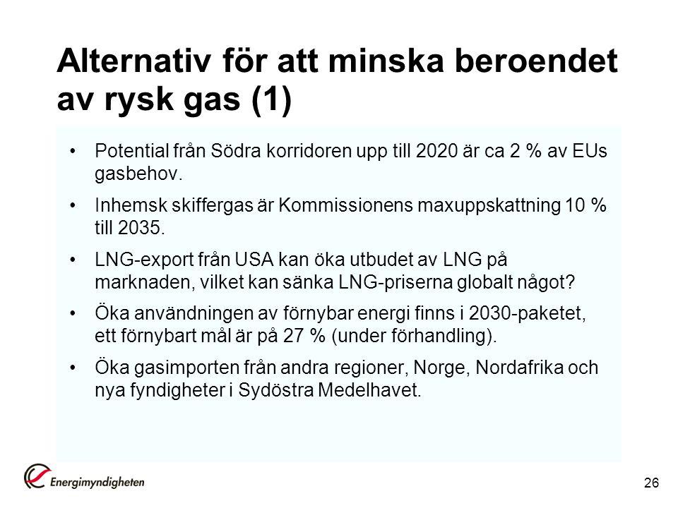 Alternativ för att minska beroendet av rysk gas (1)