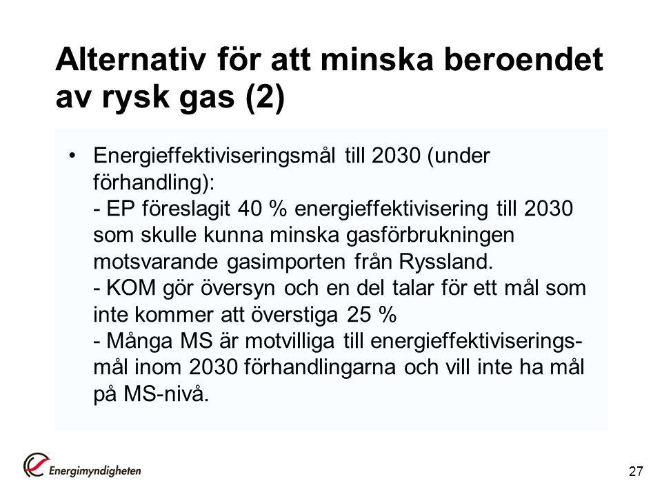 Alternativ för att minska beroendet av rysk gas (2)
