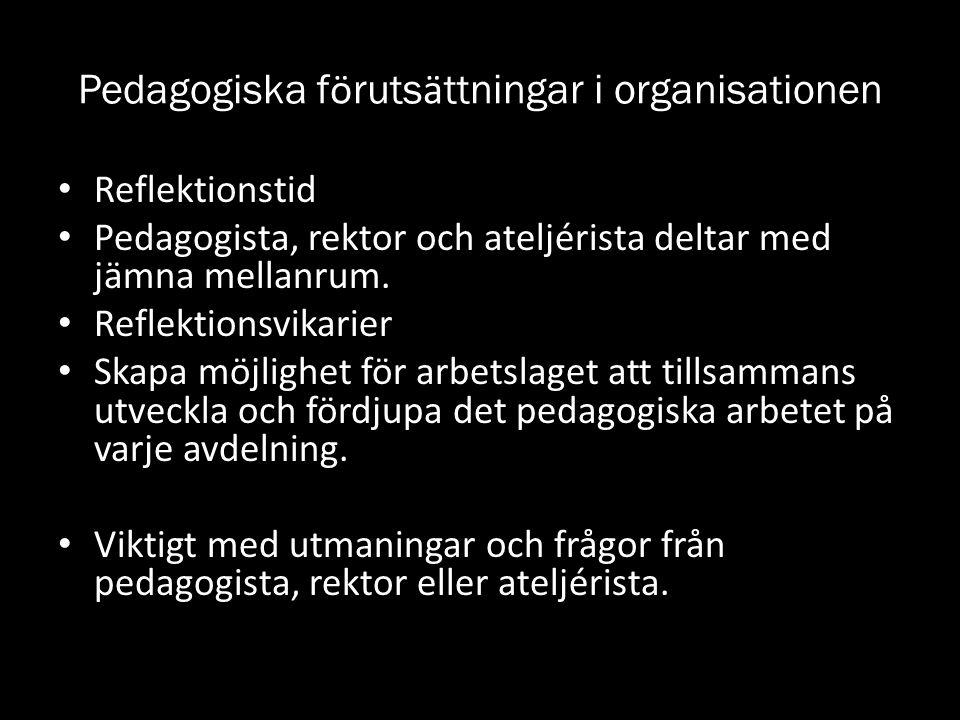 Pedagogiska förutsättningar i organisationen