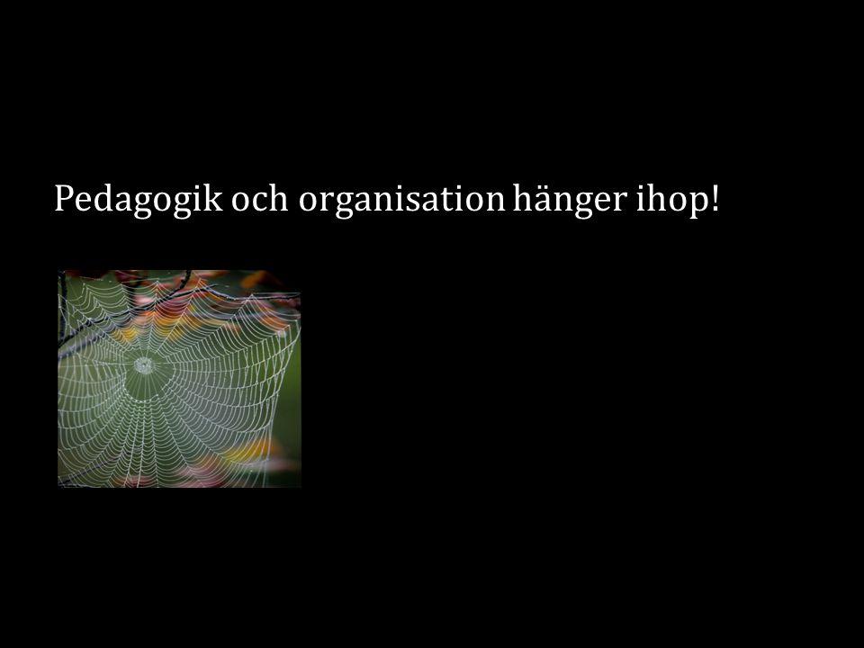 Pedagogik och organisation hänger ihop!