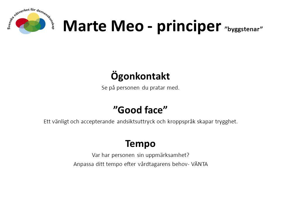 Marte Meo - principer byggstenar