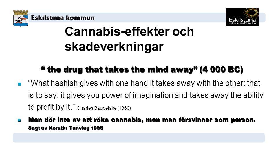 Cannabis-effekter och skadeverkningar