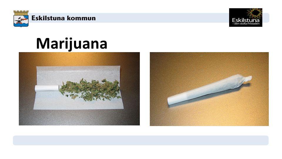 Marijuana Växtens torkade blomställningar och toppskott, delar av blad och stam. Gräs förvaras i redlinepåse. Joint – blandat med lite tobak.