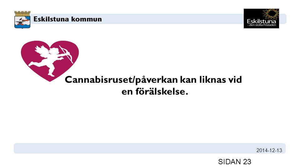 Cannabisruset/påverkan kan liknas vid