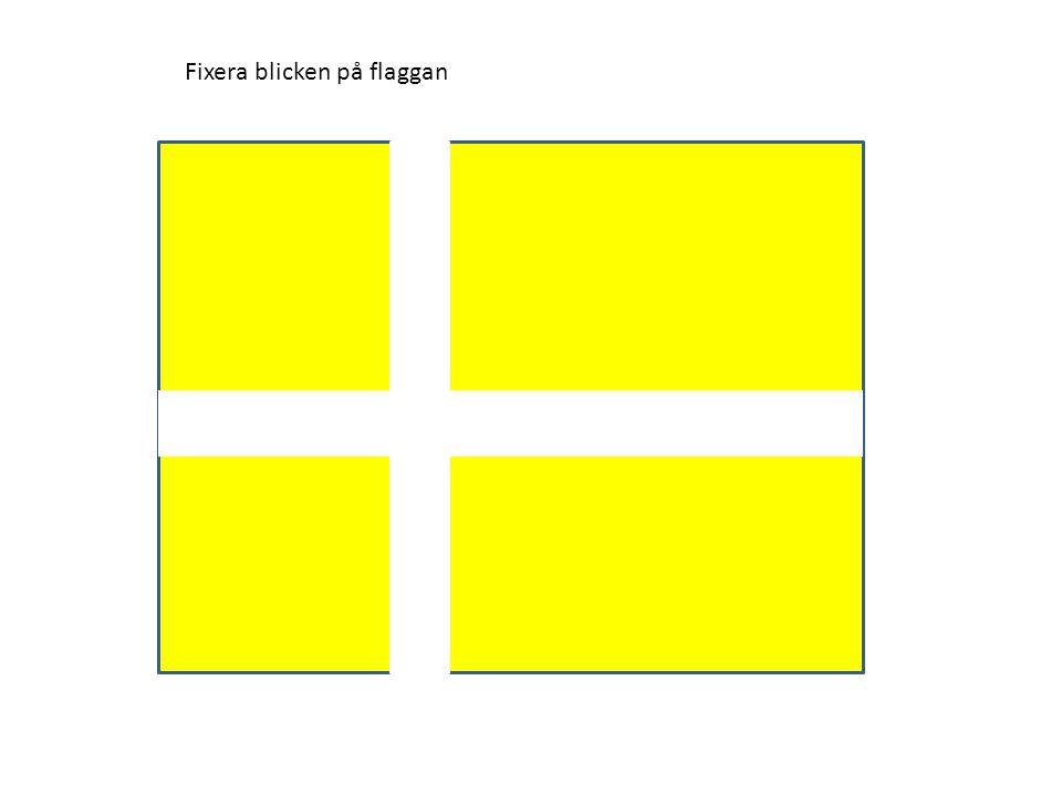 Fixera blicken på flaggan