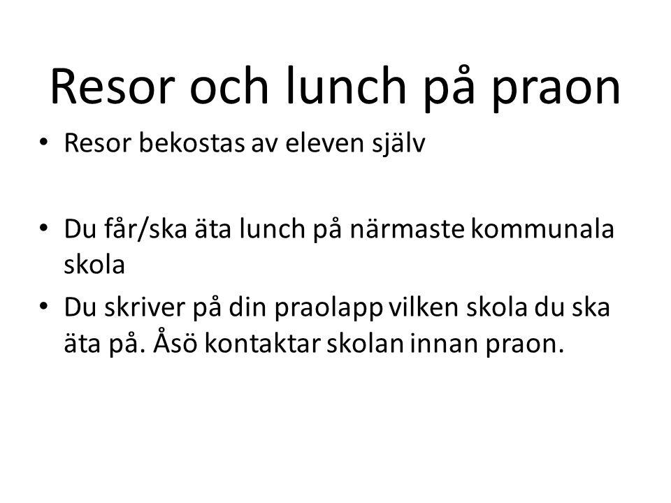 Resor och lunch på praon