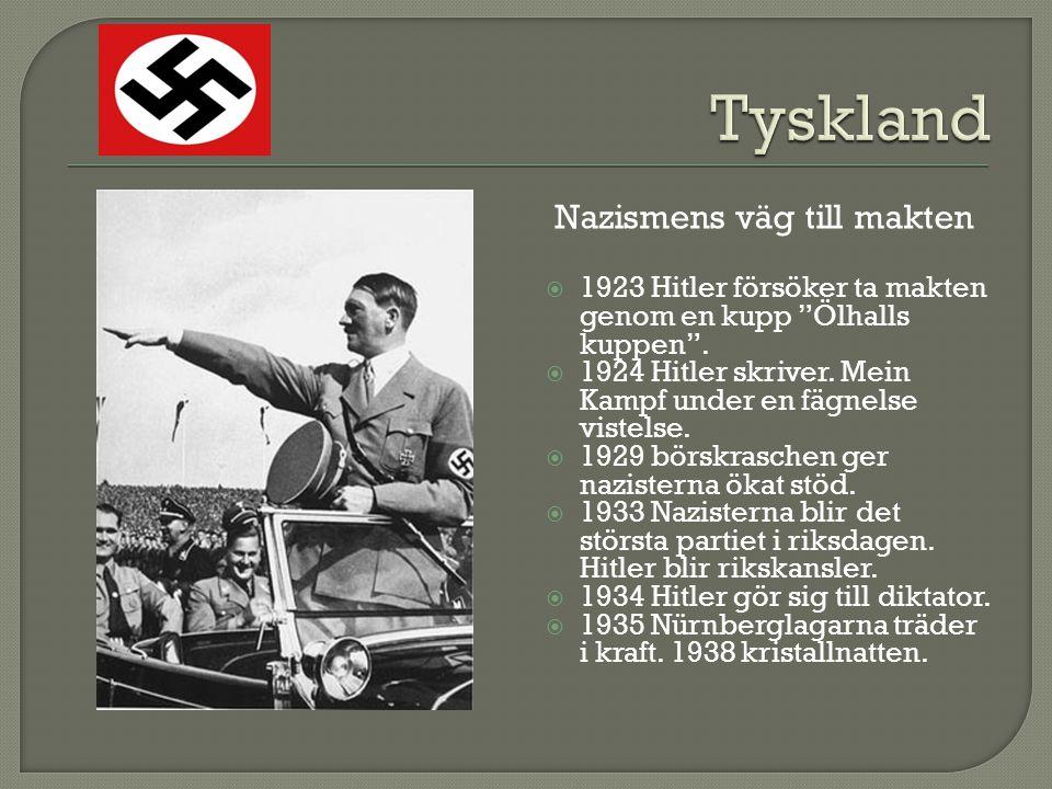 Nazismens väg till makten