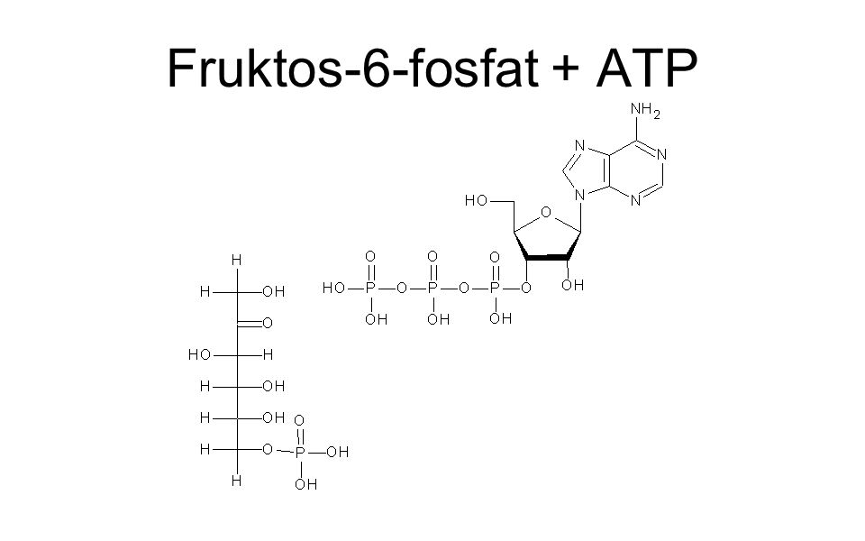 Fruktos-6-fosfat + ATP