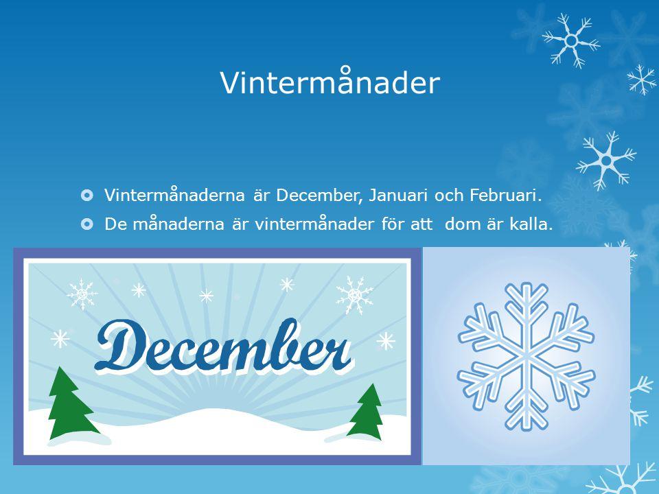 Vintermånader Vintermånaderna är December, Januari och Februari.