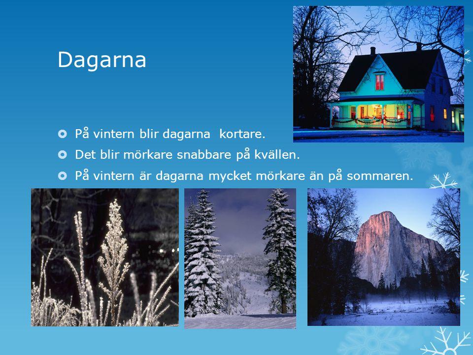Dagarna På vintern blir dagarna kortare.