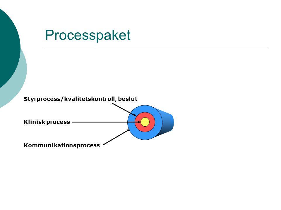 Processpaket Styrprocess/kvalitetskontroll, beslut Klinisk process