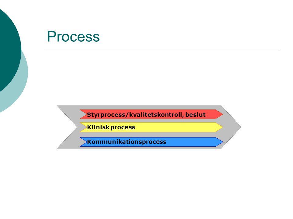 Process Styrprocess/kvalitetskontroll, beslut Klinisk process
