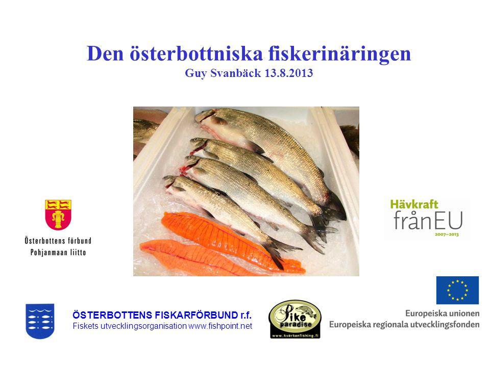 Den österbottniska fiskerinäringen