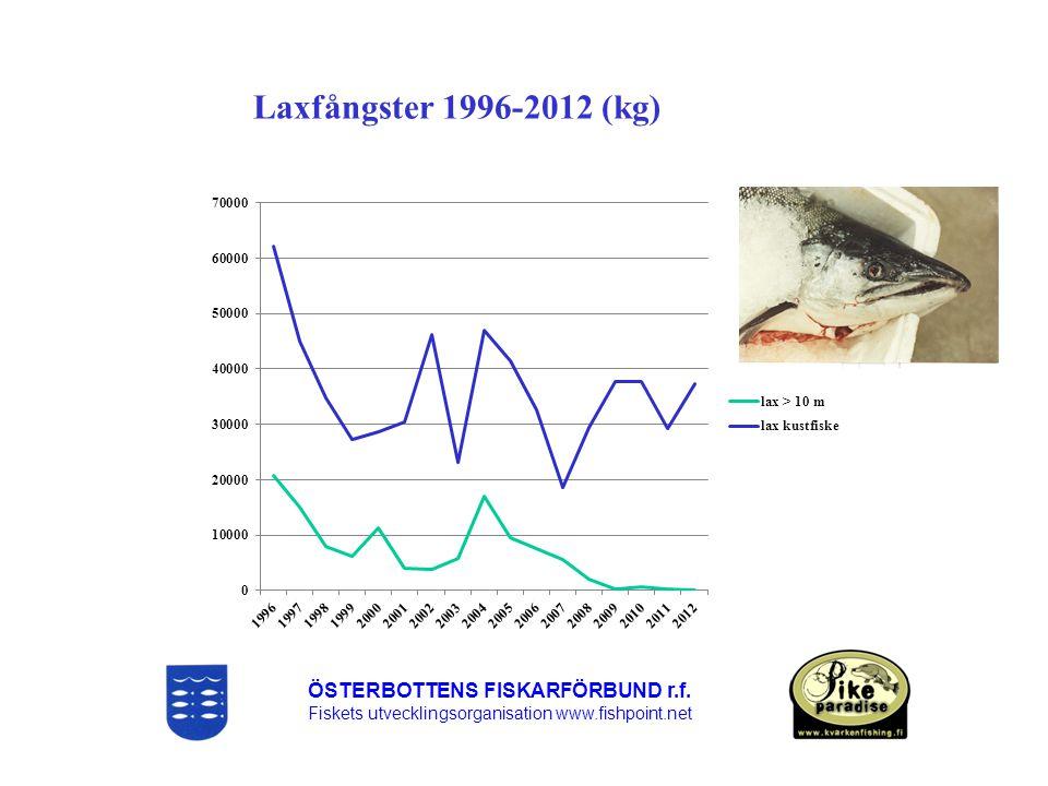 Laxfångster 1996-2012 (kg) ÖSTERBOTTENS FISKARFÖRBUND r.f.