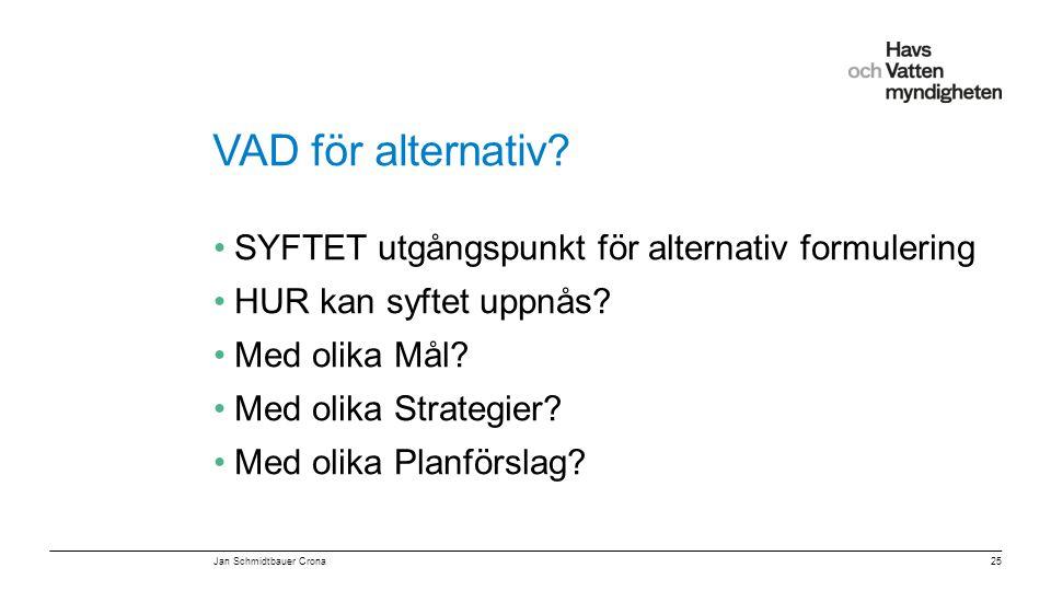 VAD för alternativ SYFTET utgångspunkt för alternativ formulering