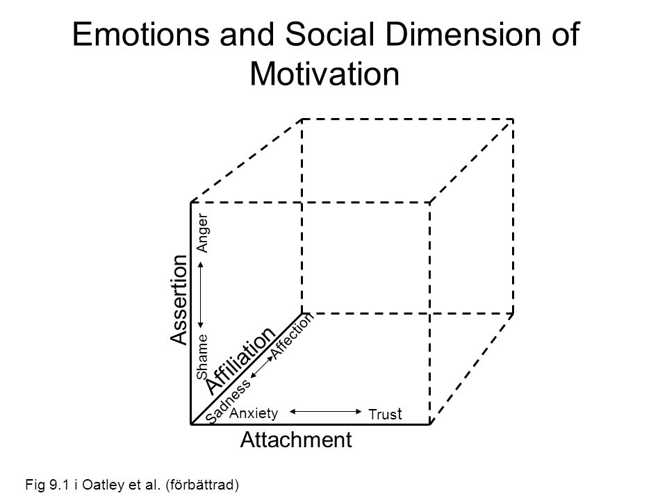Emotions and Social Dimension of Motivation