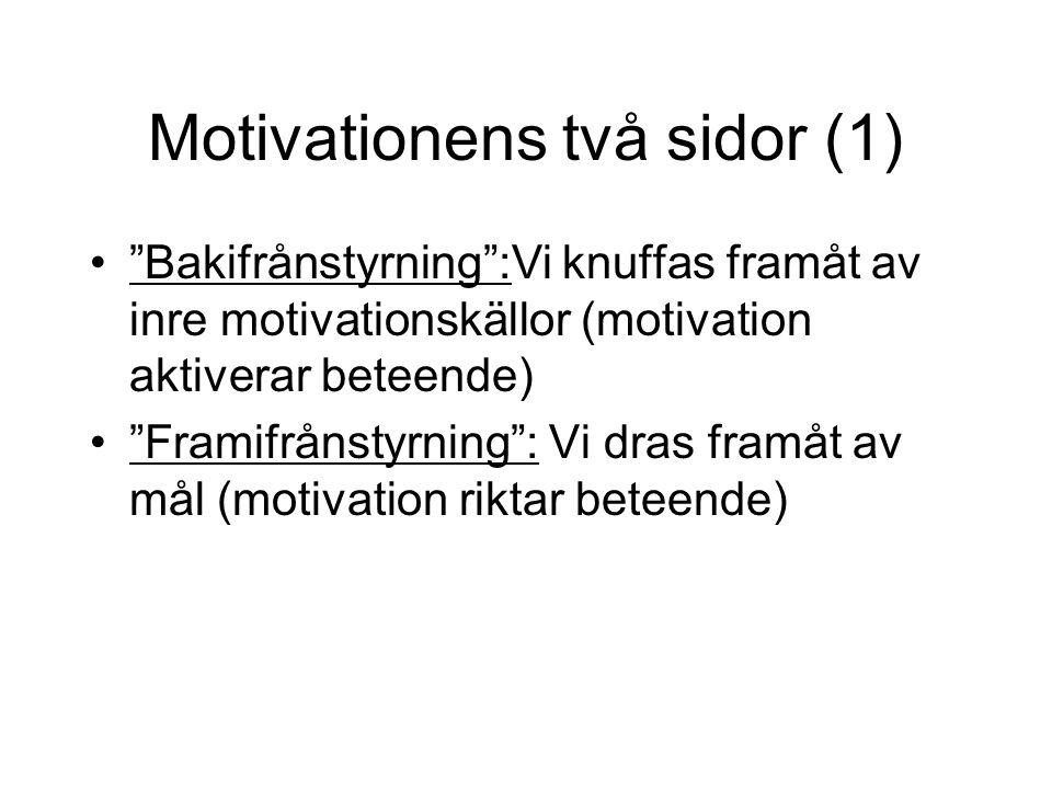 Motivationens två sidor (1)