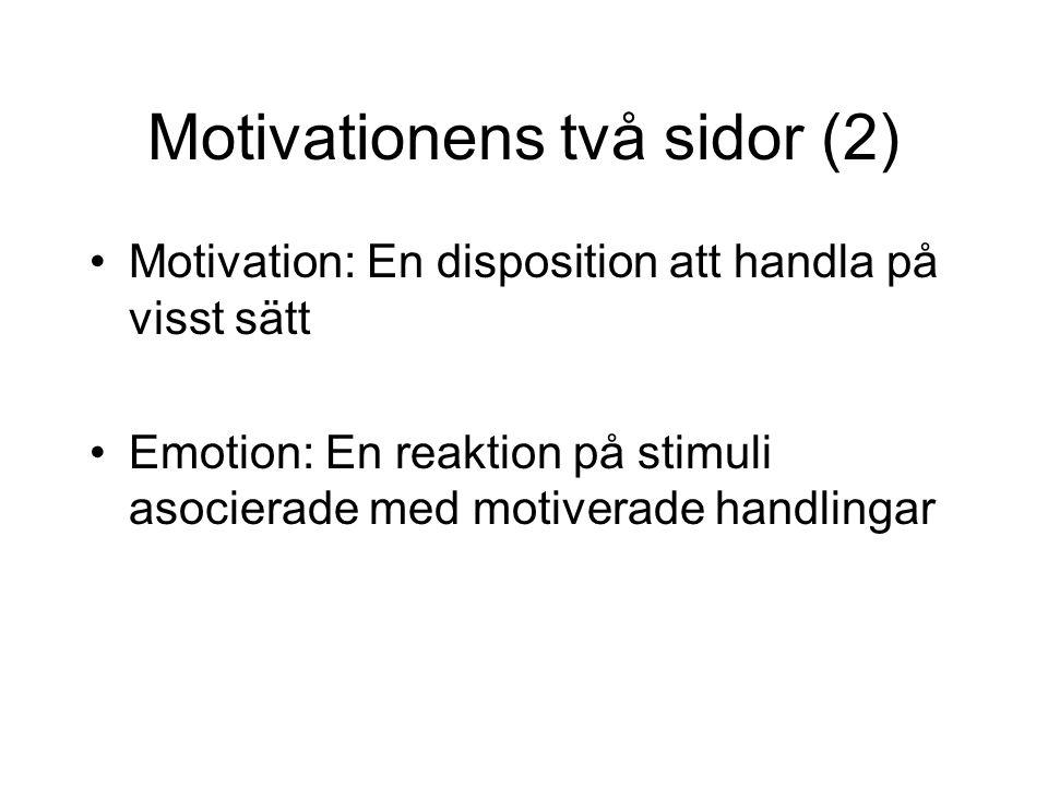 Motivationens två sidor (2)